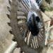 草刈機初心者は、使い方をしっかり確認して安全に使う方法。(初心者必見)
